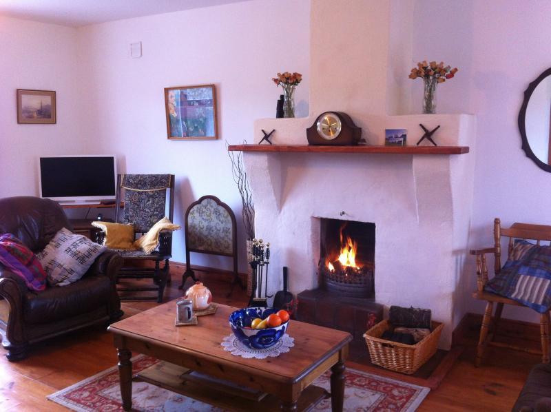 L'accogliente salotto ha un sacco di libri, giochi, TV + lettore DVD, docking station per iPod per farvi godere