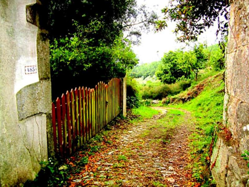 Way of St James near the house