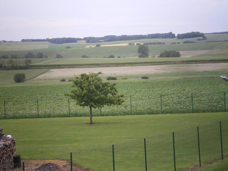 View to the west of the farmhouse