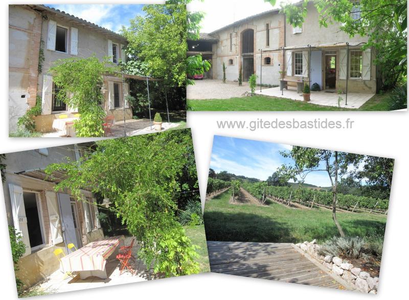 Gite Les Fortis, location de vacances à Rabastens