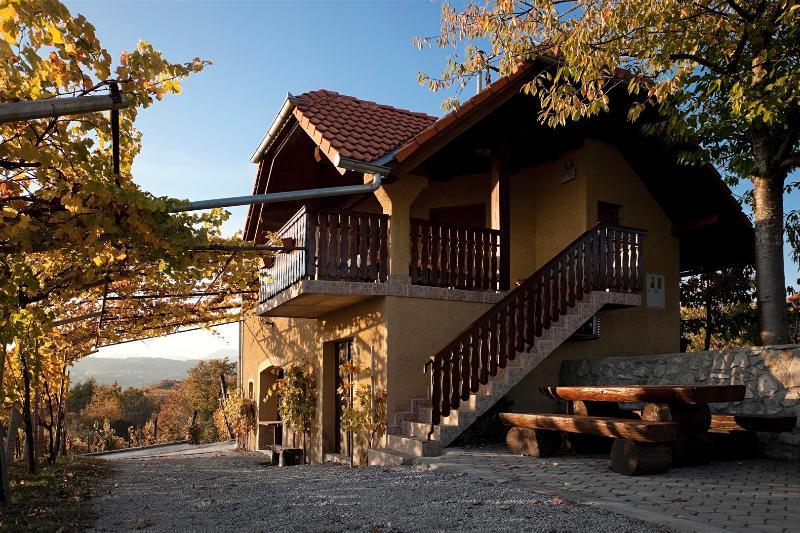Vineyard cottage - Zidanica Brodaric, vacation rental in Metlika