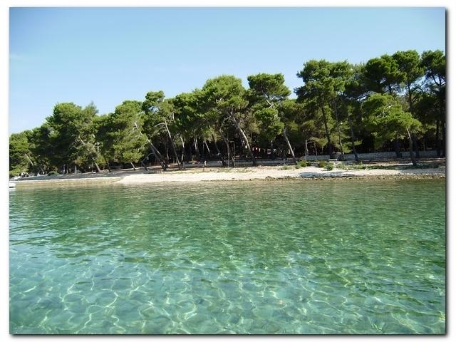 the beautiful beach on the islet Badija - 15 min journey by taxi boat