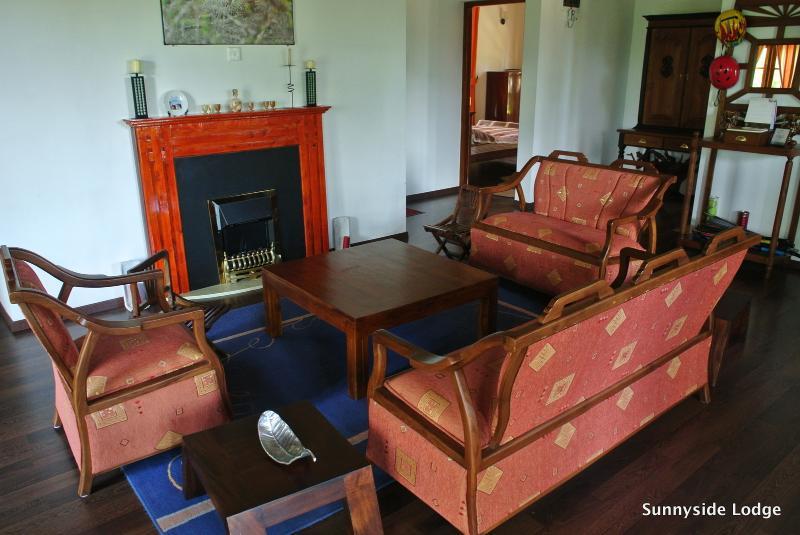 Perfiles sala de estar con chimenea