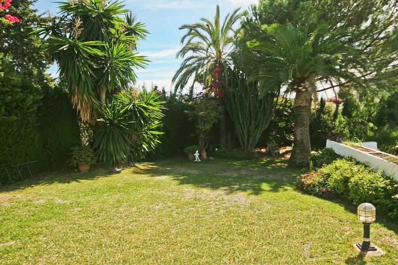 Garden to side of lower terrace.