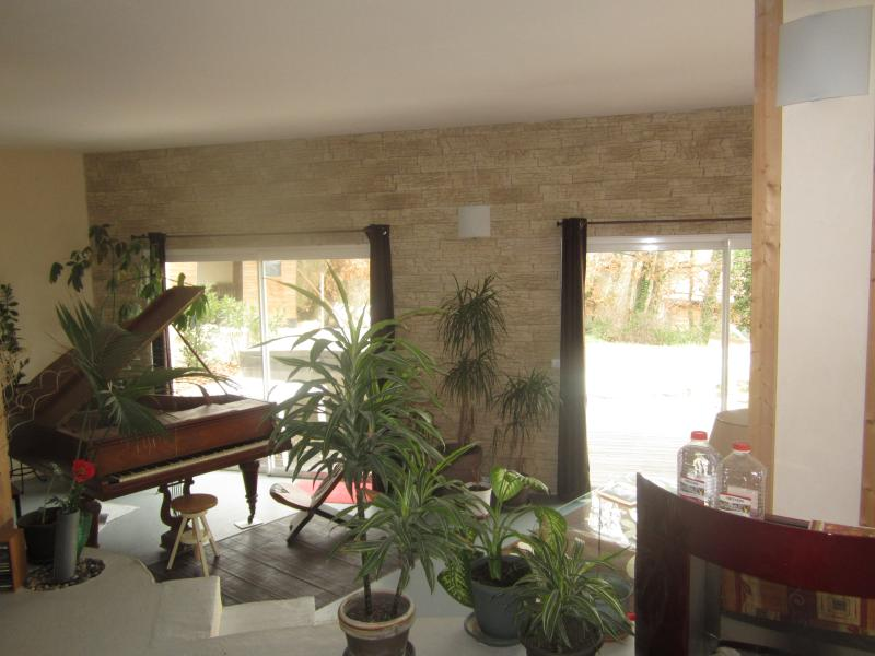salon bas, piano et plantes