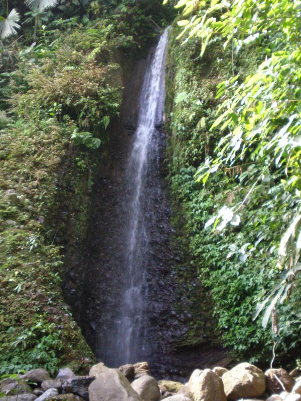 Costa Rica's parks are renowned and many, many within 1/3 hours
