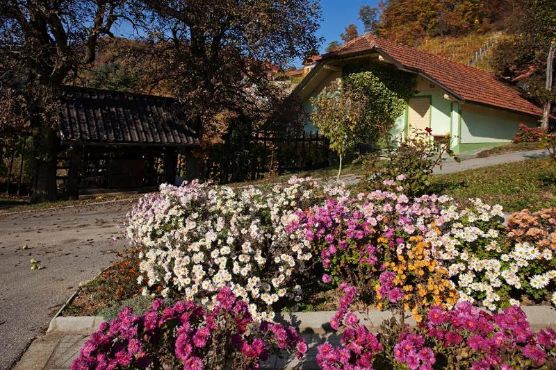 Vineyard cottage - Zidanica Gole, holiday rental in Lower Carniola Region