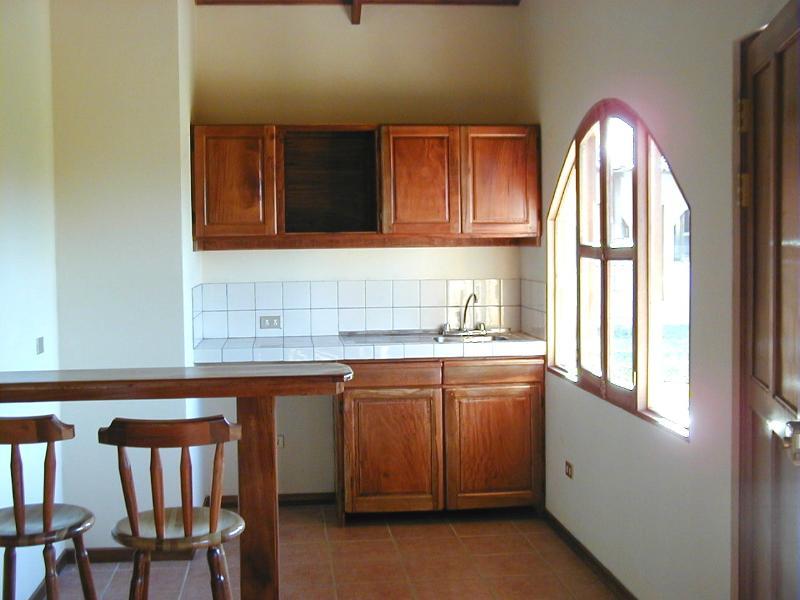 Salon/kitchen, living