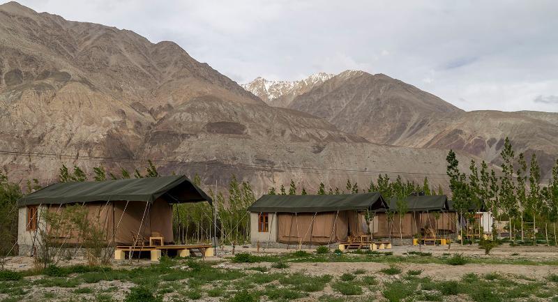 Cluster van vier tenten