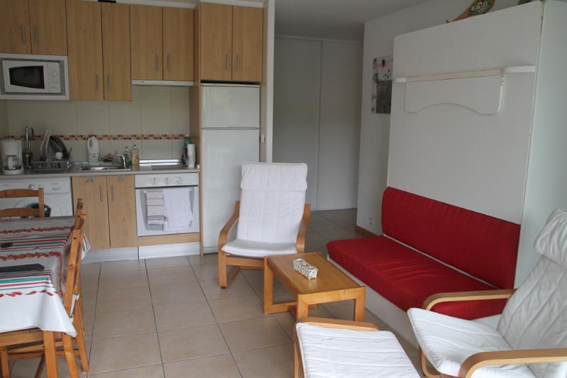 pièce principale avec le lit armoire sur la droite