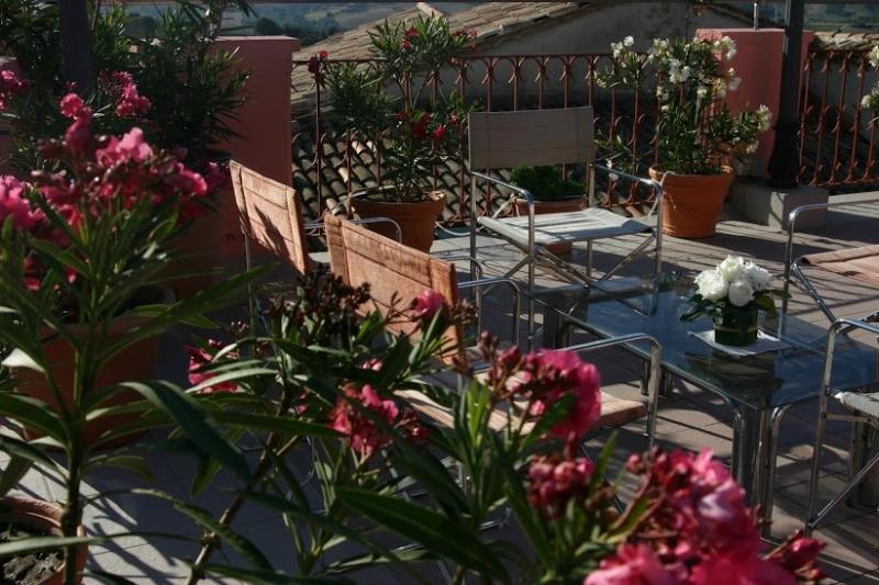 Terrasse sur le toit avec coin Jacuzzi et barbecue