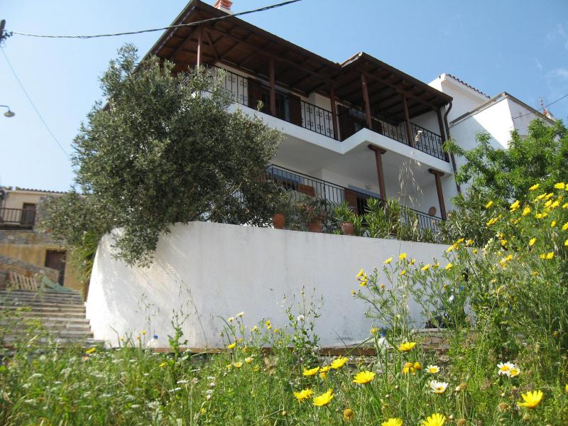 Looking up at house from Village Path