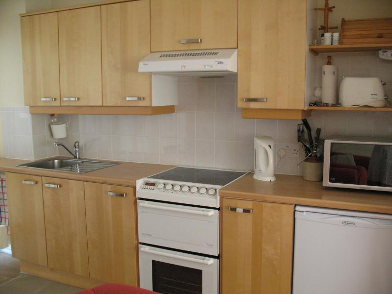 Kitchen with cooker (two ovens) and ceramic hob microwave and fridge with freezer compartment