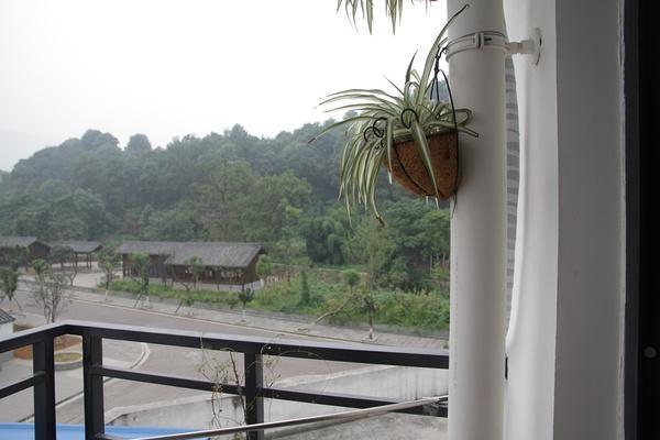 Yogamonkey, vacation rental in Emeishan