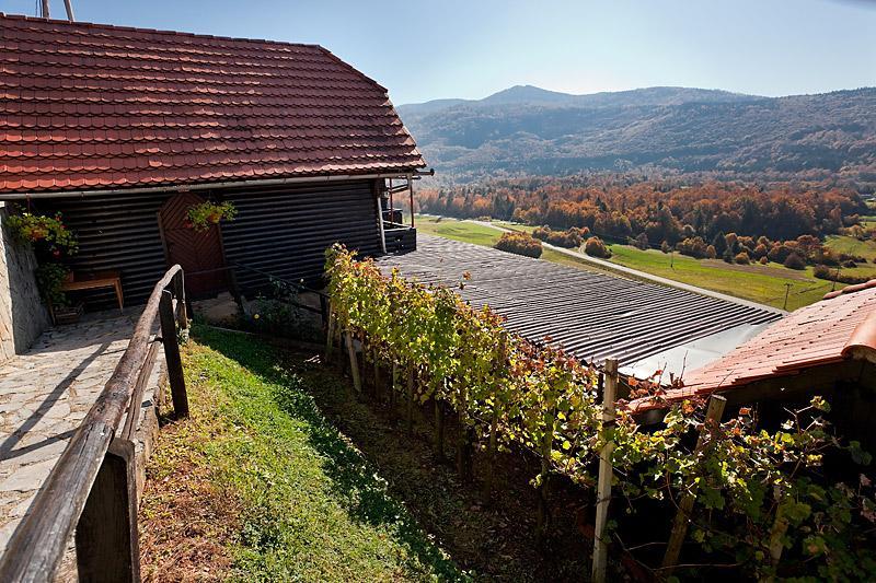 Vineyard cottage - Ludvikov hram, holiday rental in Straza