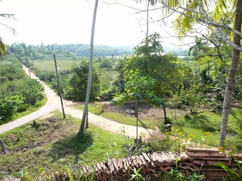 Vista dal tempio accanto al lago, dietro casa, 15 minuti a piedi