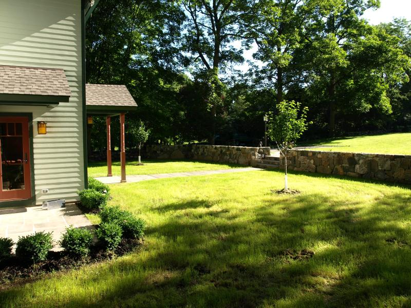 Cottage front yard