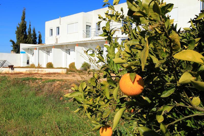 Quiet  place in Center Algarve, alquiler de vacaciones en Alcantarilha