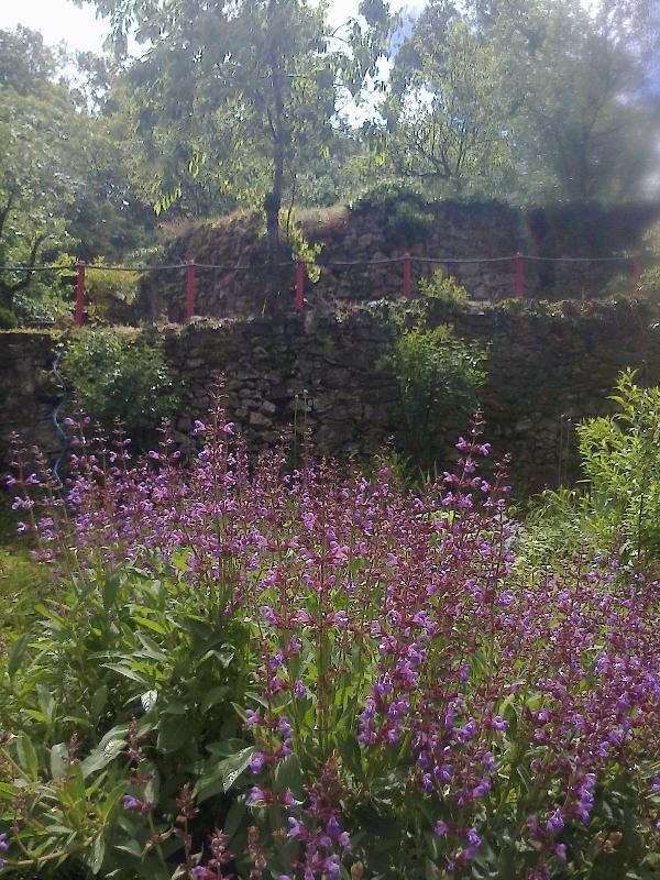 Jardin de la maison des propriétaires (owners' garden)