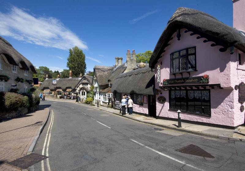 Some more Old Village thatched properties