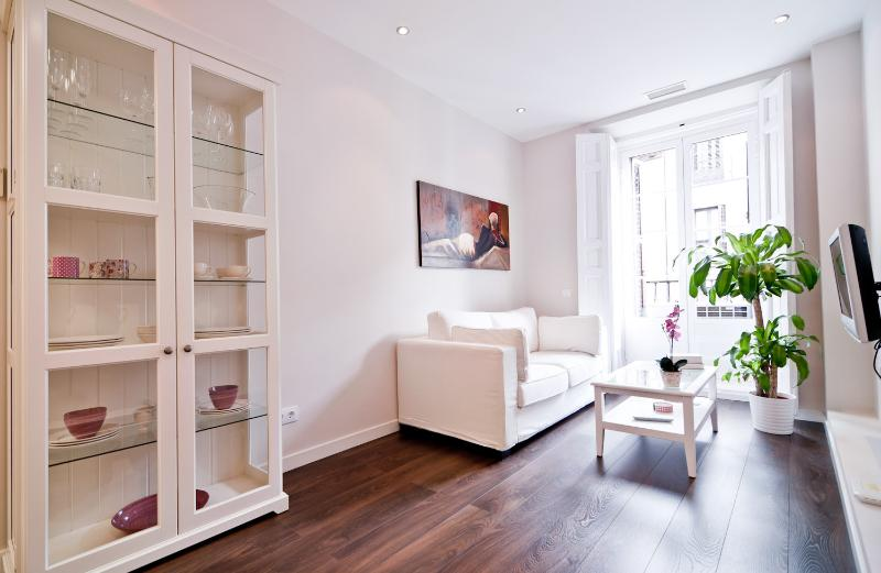 Apartment rentals in Madrid, holiday rental in Madrid