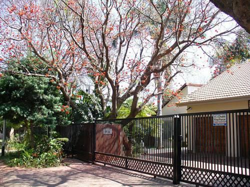 Front view of the Coral Tree House with the Coral tree prominently in the foreground