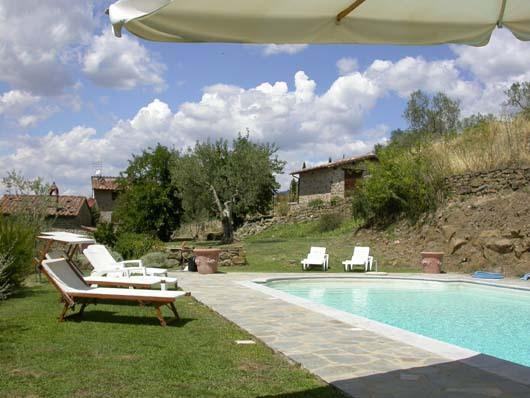 swimming pool and olive grown