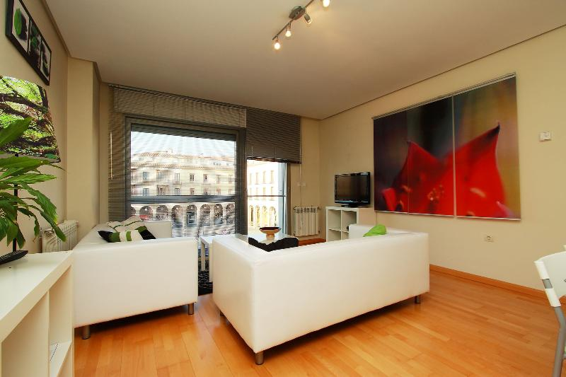 Apartamento 2 dormitorios, holiday rental in Province of Avila