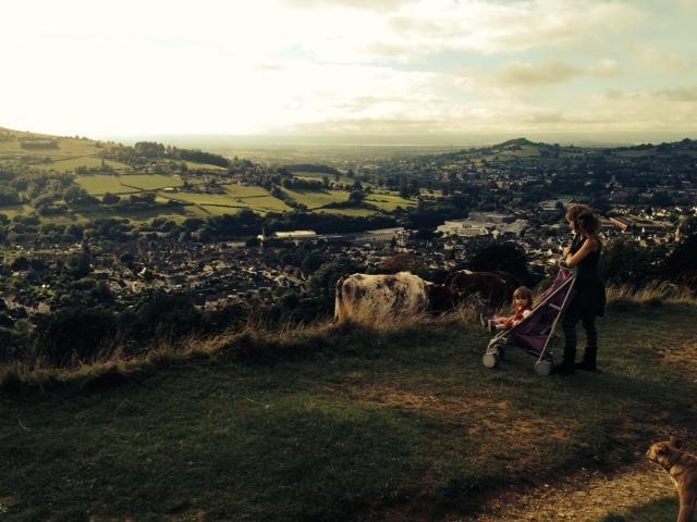 Superbe Rodborough commun 5 minutes à pied, vaches inclus:)