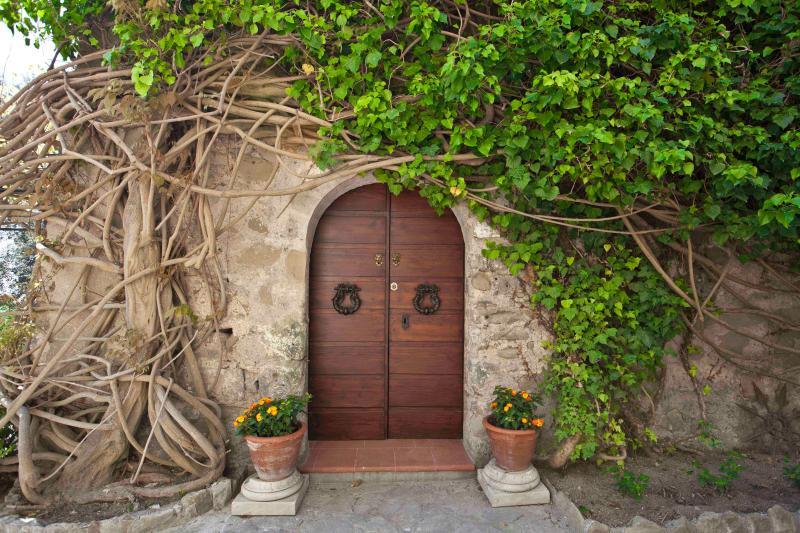 open the door of a dream