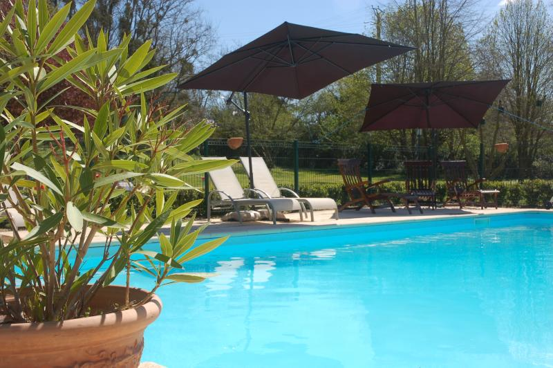 Superb heated swimming pool with views of the Loire Valley