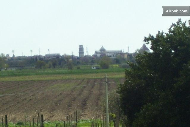 Leaning Tower View- Country ho, holiday rental in Asciano