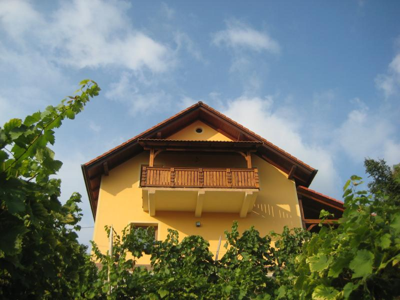 Vineyard cottage - Zidanica Ucman, holiday rental in Ratez