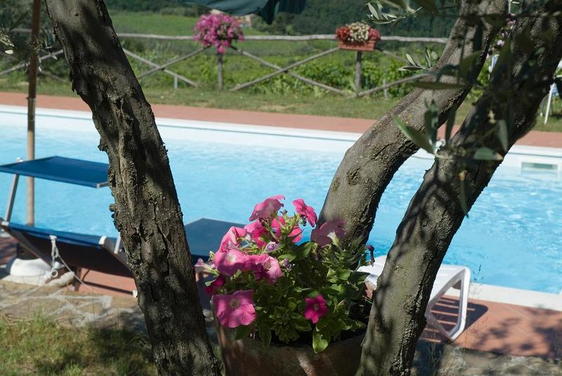 The 100% private swimming-pool: only for you!