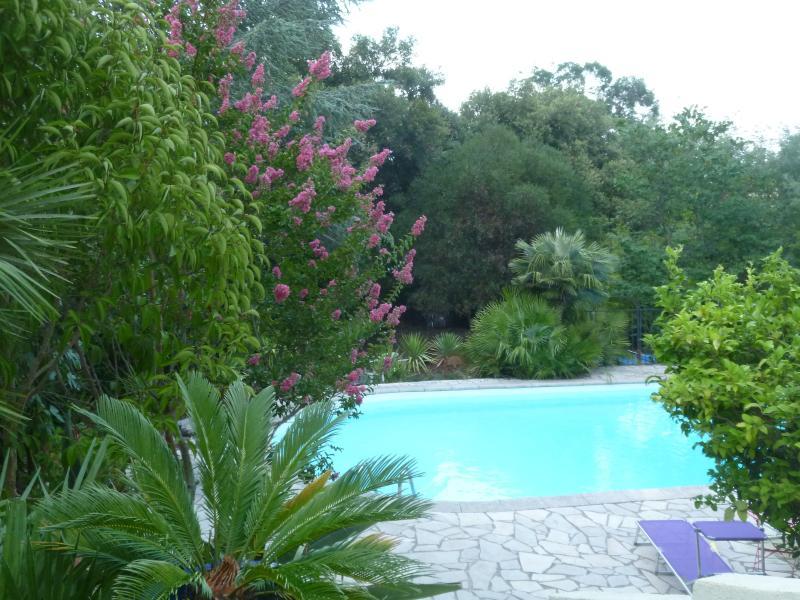Une piscine sécurisée au milieu d'un jardin