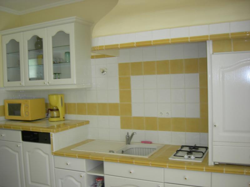 fully equipped kitchen (dishwasher, washing machine microwave...)