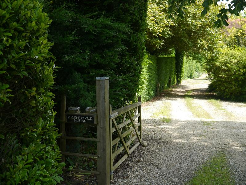 Driveway to the property