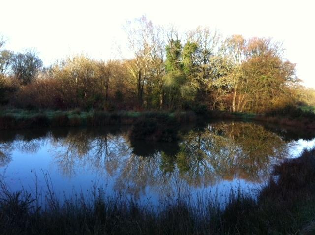 One of the two lakes in the grounds. Just sit and relax or fish if you fancy