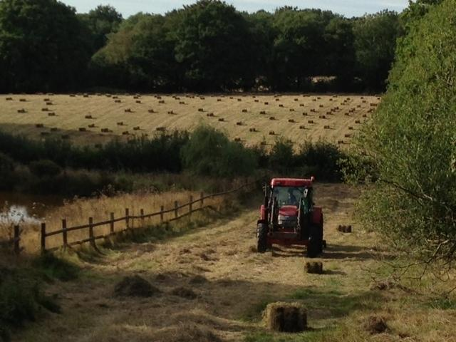 Making hay while the sun shines .... Nothing better!