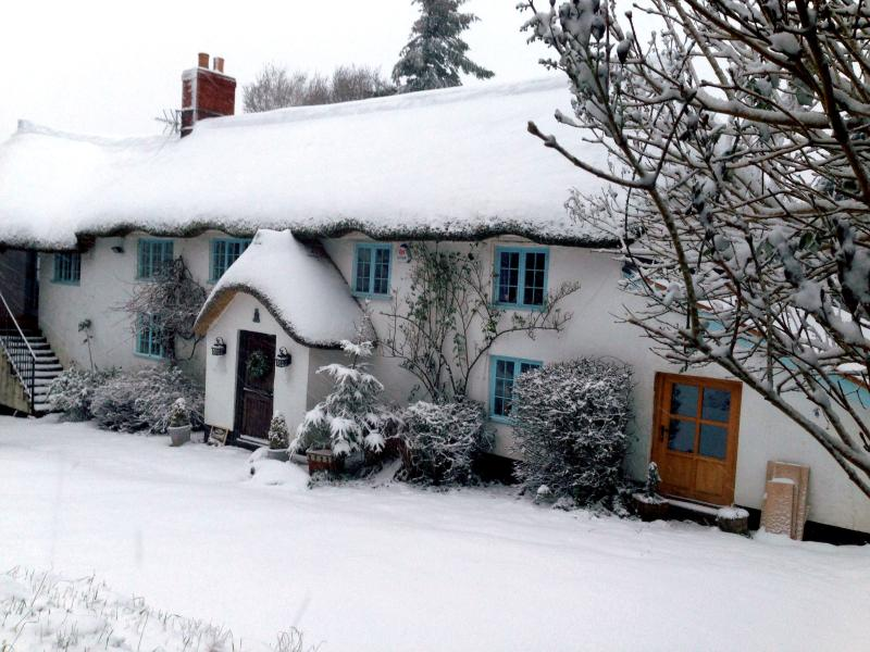 Little Snodwell Farm - A cosy place to stay in winter