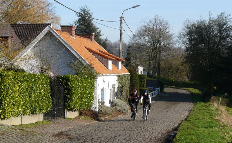 Cobblestone road in front of the house