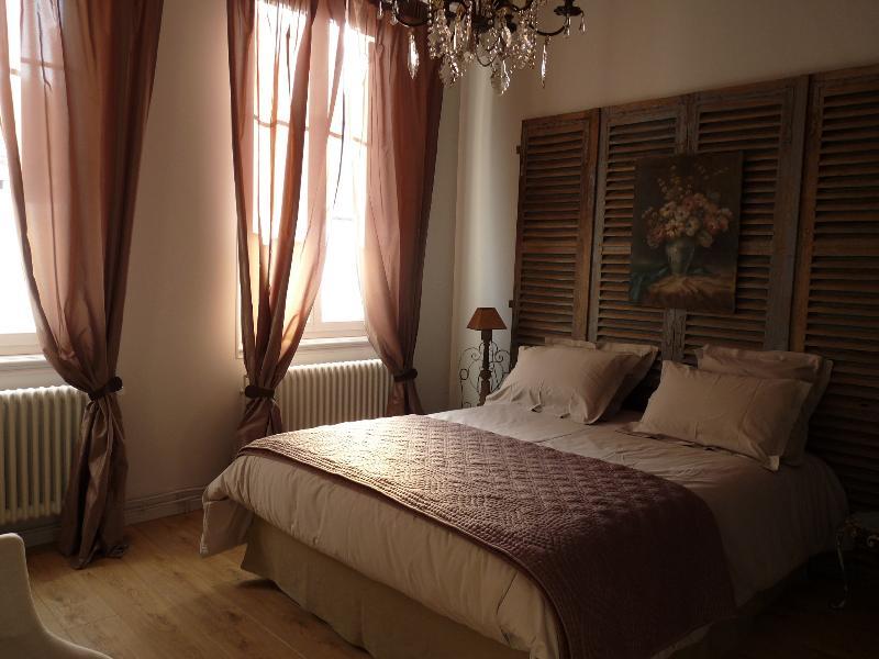 Appartement de charme et  jardin en centre ville - Reims - appartement