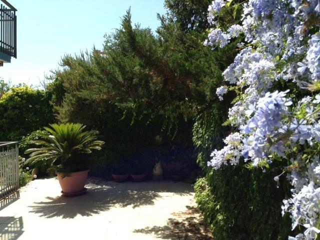 Giardino privato Private garden