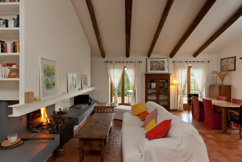 Salon d'Agarrus avec 2 grands canapes et cheminee ainsi que TV et DVD
