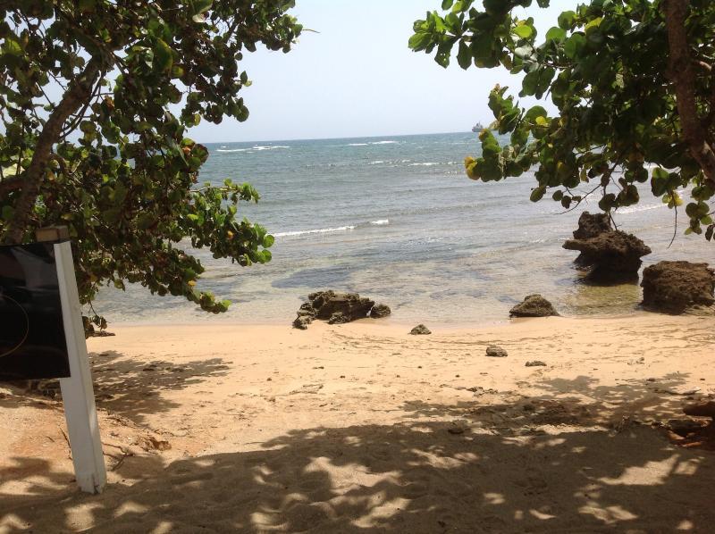 Playa de serenidad