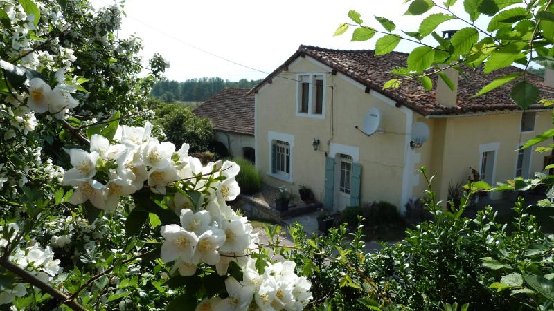 Les Rivieres- Martrieux, holiday rental in Champagne-et-Fontaine