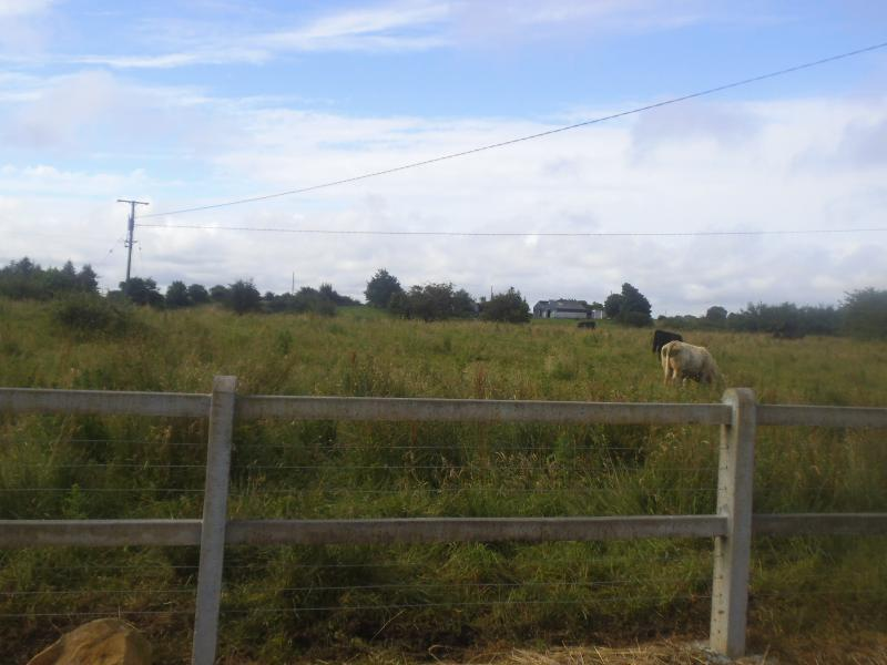 Field at rear of property