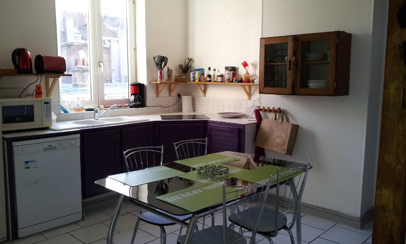 LUMINEUX DUPLEX  A LILLE WAZEMMES, vacation rental in Lille