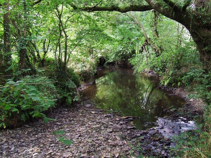 With 20 acres to explore you'll find many enticing corners, including this babbling trout strea