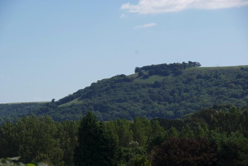 The view of Chanctonbury Ring from the front window.